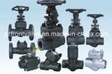 Válvulas de porta de aço forjadas de Fnpt ou de interruptor