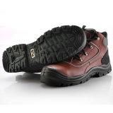 高品質の安全靴、構築の安全靴の価格M-8307
