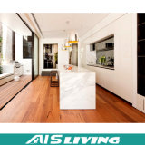 Modelo clássico da mobília do gabinete de cozinha do projeto para a casa (AIS-K099)