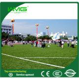 Het binnen Openlucht Kunstmatige Gras van de Voetbal