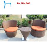 F- Outdoor Furniture Rattan Dining TableおよびChair (6423)
