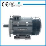 Motor de indução totalmente incluido superior da fase do tipo três da gaiola da eficiência