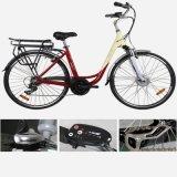 28 Inch-Lithium-Batterie-elektrisches Fahrrad (LN28C01)