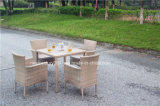 Tabella pranzante di vimini e presidenza del giardino esterno del rattan