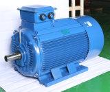 Электрический двигатель 132kw высокой эффективности серии y трехфазный