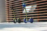 Scooter électrique d'Individu-Équilibre sec de deux roues avec le $$etAPP