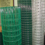 용접한 철망사가 고품질 PVC에 의하여 입히거나 직류 전기를 통한다