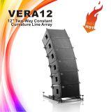 Skytone Vera 12 인치 수동적인 사용 선 배열 스피커 상자, DJ 사운드 시스템