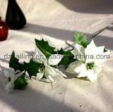Цветок Poinsettia 3 цветов для рождества и домашнего украшения (SF15964)