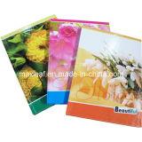 A5 - artigos de papelaria do caderno espiral de 60 folhas para o livro de nota feito sob encomenda do fornecedor das escolas