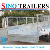 Adr de Verwijderbare aanhangwagen-Tippende Aanhangwagen van de Kooi van het Netwerk