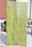 Frontière de sécurité en bambou bon marché tissée par machine