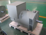 Alternador do Sell 250kw/313kVA China Stamford da fábrica do Ce (JDG314ESS)