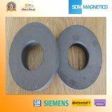 Amostras grátis ISO / Ts 16949 Certificado Ferrite Hearthcare Magnet