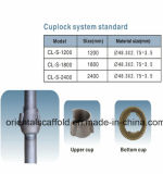 Oberes Cup Cuplock, unteres Cup Cuplock, Standard für Baugerüst-Teile