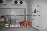 Congelatore della cella frigorifera della frutta per le verdure