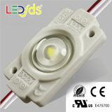 SMD coloridos impermeabilizan el módulo de 5050 LED