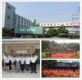 Empaquetadora del bolso de forma irregular del precio de fábrica de Chenghao