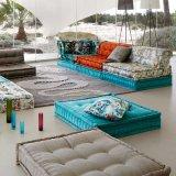 تصميم كلاسيكيّة يعيش غرفة بناء أريكة قطاعيّ ([ف895-1])
