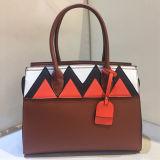 대조 색깔 Sy8042를 가진 최신 형식 운반물 숙녀 핸드백 디자이너 어깨에 매는 가방