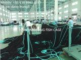 Vereinigter quadratischer Fisch-Rahmen im tiefen Meer oder im See