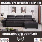 Beste Möbel-Arten Australien-im zeitgenössischen Sofa-Bett