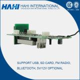 Первоначально электронный дешифратор MP5 интегрирует цепь Board-G001