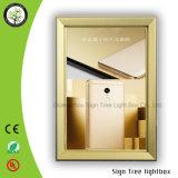 急なフレームの細いアルミニウム広告LEDによって曲げられるライトボックス