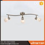 جديدة حديثة تصميم حديد & زجاجيّة [لد] مصباح كشّاف مصباح لأنّ بيتيّة زخرفة أسلوب