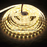 Warm White & White Two Chips in One 5025 LED Strip