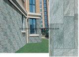 Mehrfacher Entwurfs-Porzellan-Tintenstrahl-rustikale Fliese
