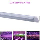22W 1.2m 가득 차있는 스펙트럼 SMD2835에 의하여 통합된 LED는 옥외를 위한 관을 증가한다
