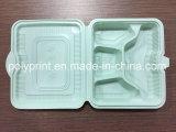 Matériel PP Matériel Fast Food Container / Tray / Plate-Machine