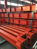 De Bouw van het staal met Efficiënte Kosten en Snelle Installatie met Modern Ontwerp