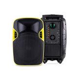100W 강력한 휴대용 Karaoke 트롤리 DJ 액티브한 LED 투상 스피커