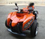 工場より安い250cc EECの公認のデューンバギー(JY-250A)