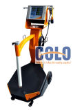 CL161sの不変色の変更のための静電気の粉のコーティングのスプレーシステム