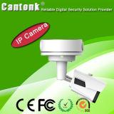 Inicio de vigilancia Auto-Focus motorizado Lens Poe cámara IP (BQ60)