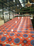 Картина травы цветка Prepainted гальванизированная стальная катушка для рынка Индии Пакистана