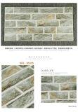 Matériaux de construction de Tile Distributeur pour Carrelage (36305)