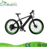Bicicleta elétrica da montanha de Cms-Tde20z com a bateria escondida 36V