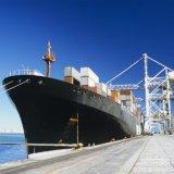O transporte do oceano, consolida, FCL, LCL de China a no mundo inteiro