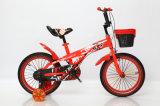 Neue Art-preiswerteres 12 Zoll-Kind-Rad-Fahrrad-Kind-Fahrrad