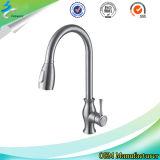 Taraud/robinet de bassin de cuisine d'acier inoxydable dans des accessoires de salle de bains