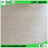 Baltische Birken-Furnierholz-Qualität für Möbel oder Supermarkt in USA