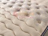 Le plus défunt matelas de qualité de fibre chimique de catalogue