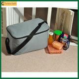 Мешки охладителя обеда пикника Eco напольные изолированные (TP-CB379)
