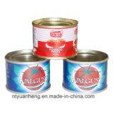 Using a pasta de tomate para o molho da massa