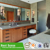 Тщета ванной комнаты типа Северной Америки самомоднейшая твердая деревянная