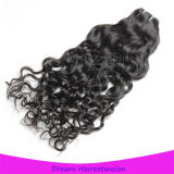 Remy Menschenhaar-natürliches Wellen-Kambodschaner-Haar
